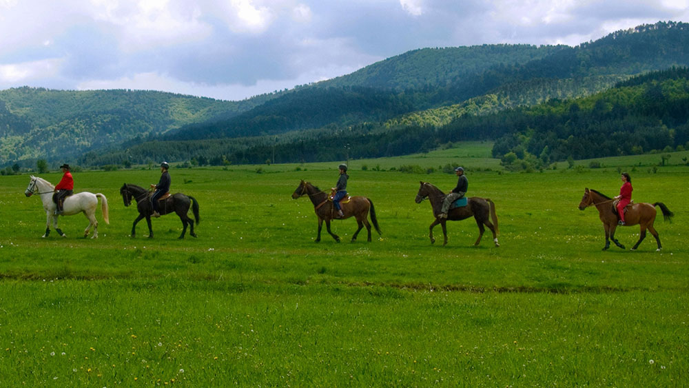Horseback riding Siveck-teambuiling Velingrad